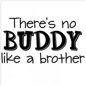 20 Funny Brother Quotes