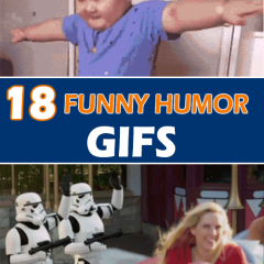 Top 18 Funny GIFs Humor