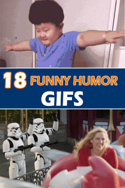 Top 18 Funny GIFs Humor