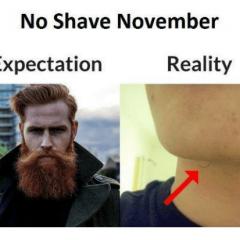 Best 18 november memes