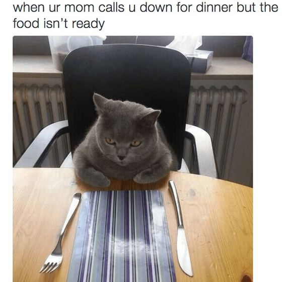 24 Relatable memes Funny